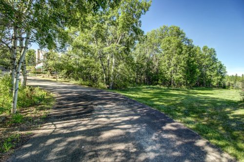 Treed driveway during summer 176127 168 Avenue W in Priddis, Alberta, Canada. Home for sale by Plintz Real Estate Calgary.v