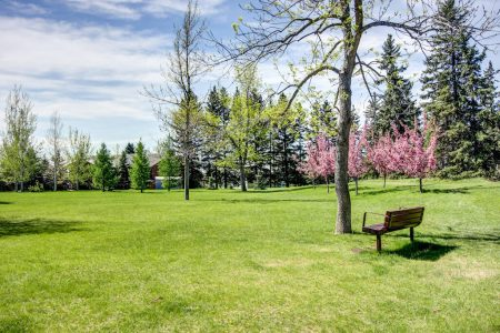 park-greenspace-3339-rideau-place-sw-devonshire-house-condo-calgary-real-estate-for-sale-dennis-plintz-realtor-sothebys-canada