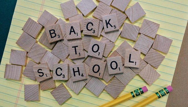 Plintz-Perspective-Back-To-School-Selling-Fall-Market