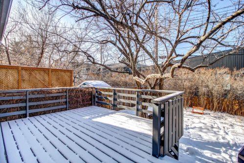 deck-shrubs-deck-tree-2503-16-Street-SW-Bankview-Calgary-Real-Estate-Homes-For-Sale-Plintz-Realtor-Dennis-Inner-City