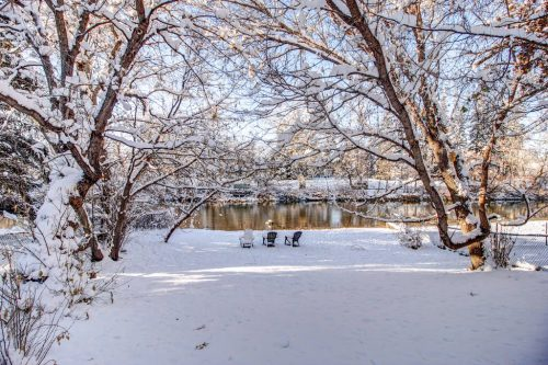 backyard-elbow-river-view-trees-snow-818-Rideau-Road-SW-Calgary-Real-Estate-For-Sale-Luxury-Home-Plintz-Realtor-Realty