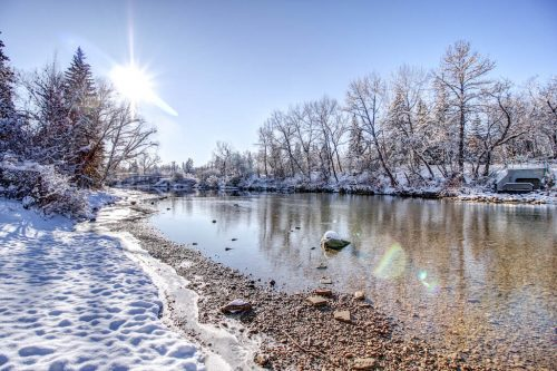 winter-elbow-river-backyard-view-818-Rideau-Road-SW-Calgary-Real-Estate-For-Sale-Luxury-Home-Plintz-Realtor-Realty