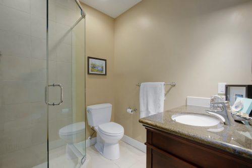 basement-bathroom-818-Rideau-Road-SW-Calgary-Real-Estate-For-Sale-Luxury-Home-Plintz-Realtor-Realty