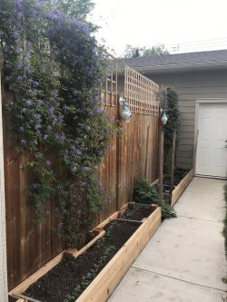 landscaping-privacy-fence-3514-42-Street-SW-Glenbrook-Calgary-Home-Real-Estate-for-sale-infill-attached-Plintz