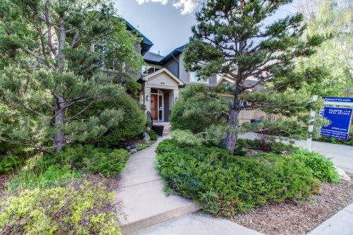 818 Rideau Road SW Luxury Homes with Trees and Landscaping at 818 Rideau Road SW