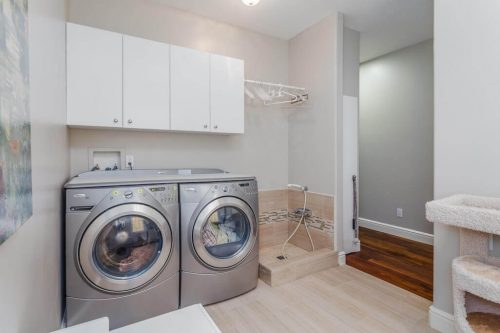 stainless steel front loading washer and dryer with pet shower