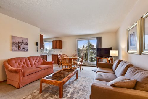 Two bedroom condo in Bankview in Calgary living room with view.